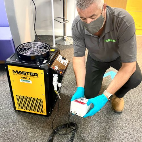 New Heat Treatment For Controlling Pests